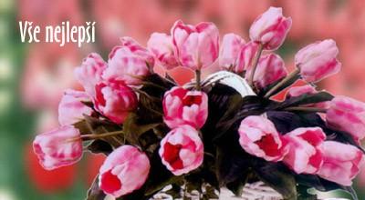poslat přání k svátku Přání k narozeninám   rozverné tulipány | poslat prani.cz poslat přání k svátku